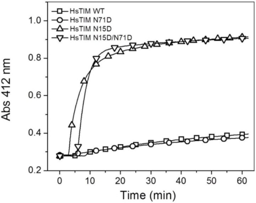 The N15D mutation decreases the structural compactness of HsTIM.The derivatization of cysteine residues in TIM (300 μg/mL) by DTNB (1 mM) was followed spectrophotometrically at 412 nm. The experiment is representative of duplicate experiments qualitatively identical.