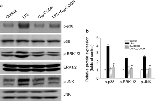 a BV-2 cells were treated with 1 μg/mL of LPS for 1 h with or without C60–COOH (50 μM) pretreatment for 6 h, and cell lysates were prepared and subjected to western blotting analysis for phosphorylated and total p38, ERK1/2, and JNK protein expression. b The relative levels of phosphorylated p38, ERK1/2, and JNK expression were performed by densitometric analysis. The data are expressed as the mean ± SD of three independent experiments. *p < 0.05, significantly different from LPS-treated control