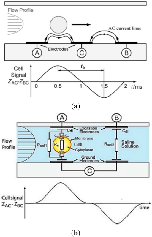 (a) Illustration of a particle flowing over three electrodes inside a microfluidic channel, and a typical impedance signal for a single particle. Reprinted with permission from [75]; (b) A single cell flowing over one pair of electrode and second pair used as reference is shown. Reprinted with permission from [76]; (c) Schematic diagram of the micro impedance cytometer system, including the confocal-optical detection. Reprinted with permission from [81]; (d) Schematic of the complete microfluidic cytometer. The lock-in amplifier drives the series resonance circuit, formed by the discrete inductor and the impedance between the measurement electrodes, with an alternating current (AC) signal at a frequency close to resonance. Reprinted with permission from [82].