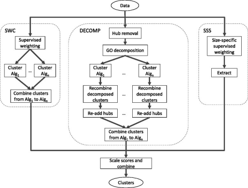 Flowchart of our integrated system consisting of Supervised Weighting of Composite Networks (SWC), PPI decomposition (DECOMP), and Size-Specific Supervised Weighting (SSS)