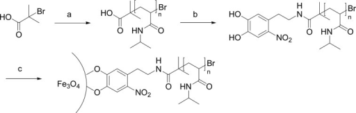 Synthesis of Nitrocatechol Functionalized PNIPAM(a) ATRP of NIPAM with acid functionalized initiator (water/methanol9/1), CuBr, CuBr2, tris[2-(dimethylamino)ethyl]amine (Me6Tren), (b) 6-nitrodopamine hydrogensulfate, COMU, DMF, N,N-diisopropylethylamine, (c) graftingonto iron oxide nanoparticles, DMF, ultrasonication.