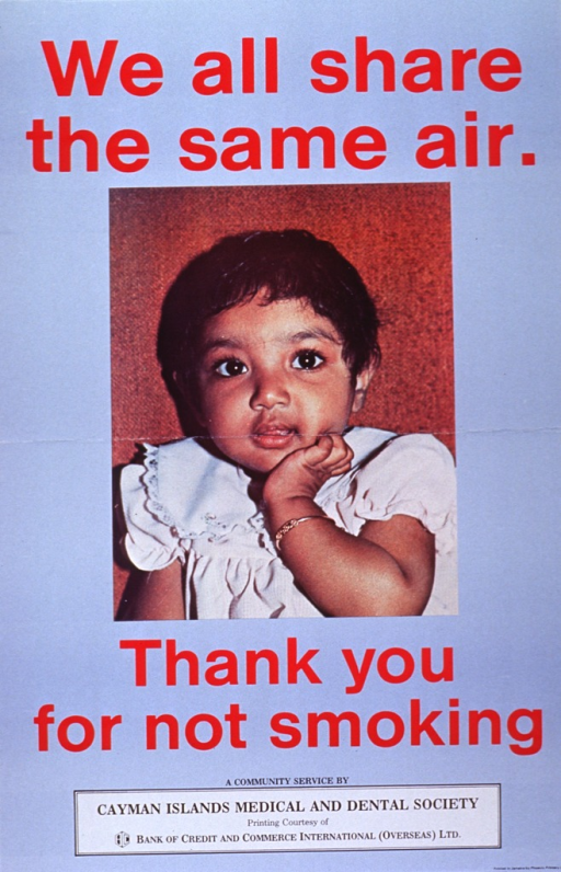 <p>Light blue poster with red and black lettering.  Initial title words at top of poster.  Dominant visual image is a reproduction of a color photo of a toddler girl with dark hair and dark eyes, wearing a white dress and gold bracelet.  Remaining title words appear below image.  Sponsorship statement at bottom of poster.</p>