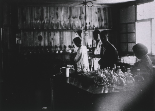 <p>Interior view: a table with beakers and a pitcher; in the background is shelving; a single light bulb hangs from the ceiling.</p>