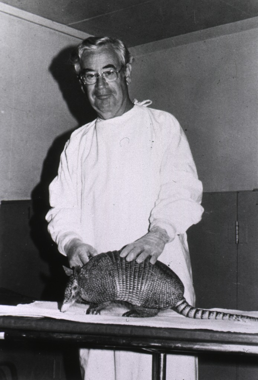 <p>A man in a white lab coat and wearing plastic gloves holds a live armadillo, which stands in profile on a lab table.</p>
