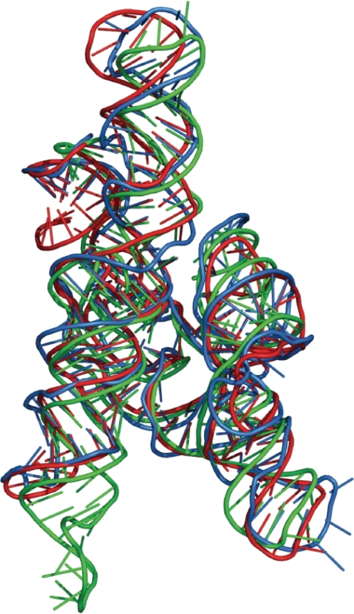 The model of Azoarcus group I intron built with ModeRNA (in red) and with RNABuilder (51) (in blue) compared with the experimentally solved structure, PDB code 1U6B (in green).