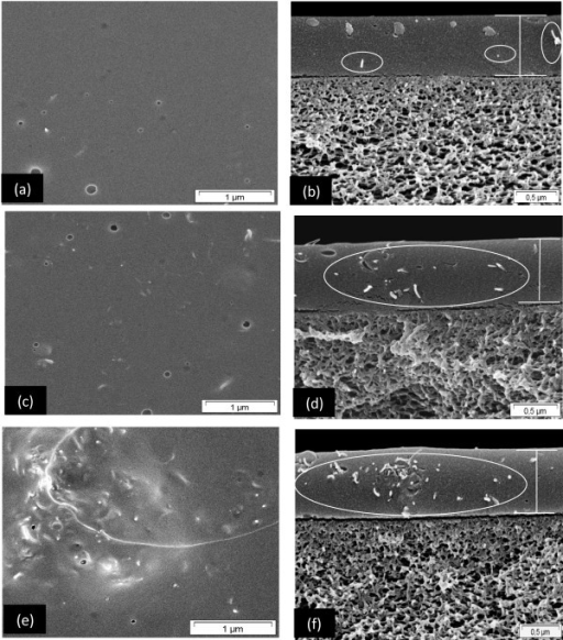 SEM images of surface and cross section of PIM-1 MMM incorporated with different f-MWCNT loading. 0.5 wt.% (a, b); 2 wt.% (c, d); and 3 wt.% (e, f) (PIM-1 and 1 wt.% f-MWCNT/PIM-1 MMM are shown in Figure6a, b, e, f).