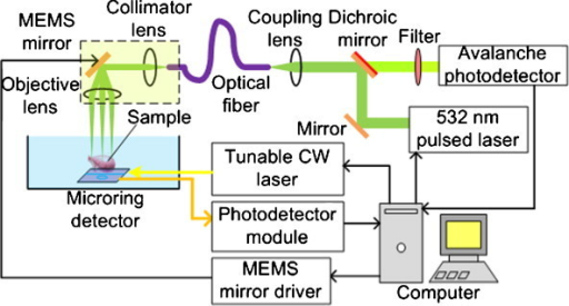 schematic diagram of the fiber optic based pam and cfm open i rh openi nlm nih gov Transmission Probe Hellma Fiber Optic Inspection Probe