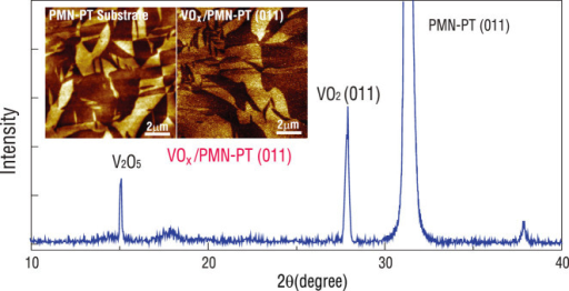 XRD pattern of a VOx/PMN-PT (011) oxide heterostructure obtained by magnetron sputtering.Insets are the out-of-plane PFM phase images of the pristine PMN-PT substrate (left) and the VOx film coated on PMN-PT (right).