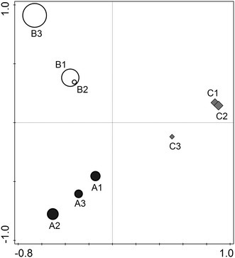 Principal component analysis (PCA) ordination of the microbial diversity data in the snow from the three North Pole sites. The first axis explains 31.8 % of the variation in the data, and the second axis explains 25.9 % of the variation in the data. The size of the circles is determined by the richness of the samples