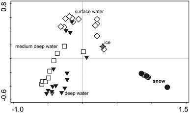 Principal component analysis (PCA) ordination of the microbial diversity data in the snow from the three North Pole sites, ice and ocean water of three depths. The first axis explains 25.9 % of the variation in the data, and the second axis explains 14.8 % of the variation in the data