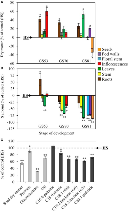 Evolution of the dry matter (A), changes in the S amount (B) and seed yield and composition (C) of oilseed rape subjected to limitation of sulfate at the bolting stage. S limitation (LS32 plants supplied with 8.7 μM sulfate) was compared to control plants (HS plants supplied with 508.7 μM sulfate). (A) Variations in dry matter of LS32 plants (as % of HS plants) between GS53 (early flowering), GS70 (start of pod filling) and GS81 (seed coloring). (B) Variations in the S amount in different organs of LS32 plants (as % of HS plants) between GS53 and GS81. A positive or a negative value indicates that the dry matter or the S amount is increased or reduced compared with HS plants, respectively. (C) Seed yield and composition of seeds (proteins, glucosinolates, oil, fatty acids) in LS32 plants (as % of HS plants) at mature seed stage (GS99). Significant differences between treatments are indicated with asterisks (n = 4; *P < 0.05; **P < 0.01).
