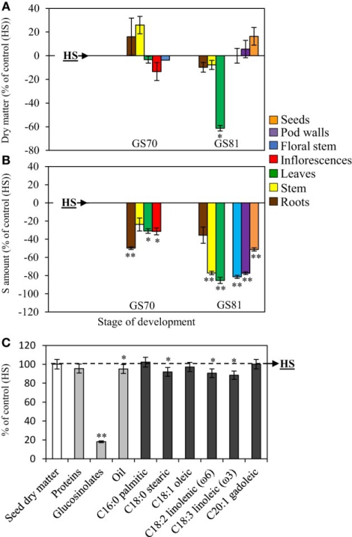 Evolution of the dry matter (A), changes in the S amount (B) and seed yield and composition (C) of oilseed rape subjected to limitation of sulfate at the early flowering stage. S limitation (LS53 plants supplied with 8.7 μM sulfate) was compared to control plants (HS plants supplied with 508.7 μM sulfate). (A) Variations in dry matter of LS53 plants (as % of HS plants) between GS70 (start of pod filling) and GS81 (seed coloring). (B) Variations in the S amount in different organs of LS53 plants (as % of HS plants) between GS70 and GS81. A positive or a negative value indicates that the dry matter or the S amount is increased or reduced compared with HS plants, respectively. (C) Seed yield and composition of seeds (proteins, glucosinolates, oil, fatty acids) in LS53 plants (as % of HS plants) at mature seed stage (GS99). Significant differences between treatments are indicated with asterisks (n = 4; *P < 0.05; **P < 0.01).