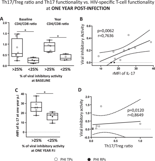 Influence of Th17 levels and Th17/Treg ratio on the quality of the HIV-specific CD8 T-cell responses at later times post-infection.Differences between PHI patients showing baseline viral inhibitory activity (VIA) higher or lower to 25 percent (> and <25%, respectively) regarding to their CD4/CD8 ratio at baseline and one year p.i (A). Correlation found between VIA versus (vs.) relative mean fluorescent intensity (rMFI) of IL-17 within PHI cohort at one year p.i (B). Comparison of PHI patients with VIA > and <25% at one year p.i regarding to their rMFI of IL-17 also at one year p.i (C). Correlation found between VIA versus (vs.) Th17/Treg ratio within PHI cohort at one year p.i (D). Symbols distinguish individual patients from the different sub-groups indicated in the figure. PHI: primary HIV infection cohort. TPs: typical progressors. RPs: rapid progressors. Boxes indicate median values with 25–75 percentiles and bars show the maximum and minimum values. The p values obtained are depicted as * p < 0.05 (A and C). All r and p values correspond to Spearman's correlations (B and D).