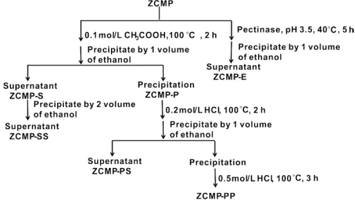 Flow chart of the degradation process of ZCMP.