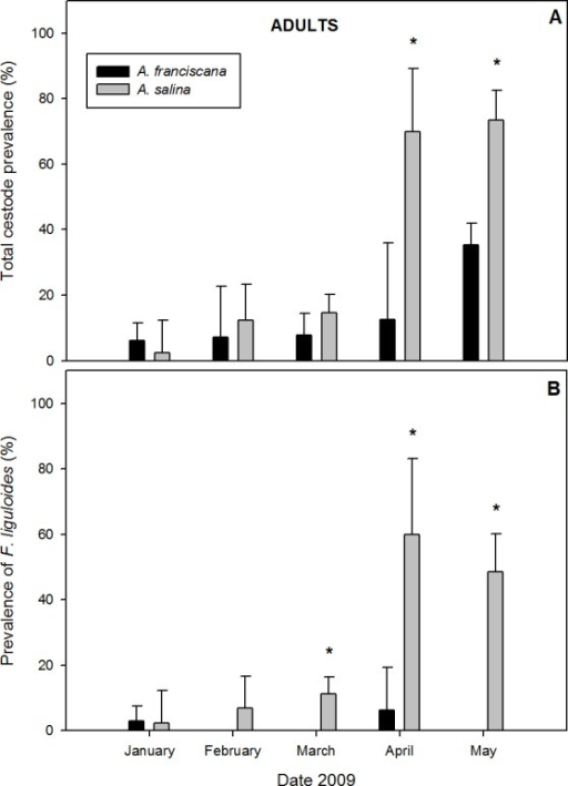 Comparative infection in adults of syntopic brine shrimp populations: A. franciscana and A. salina from pond CX, during months when they were co-existing.(A) Total cestode prevalence, (B) Prevalence of Flamingolepis liguloides. Bars show upper 95% confidence intervals. * significant differences at p < 0.05 according to Fisher Exact tests.