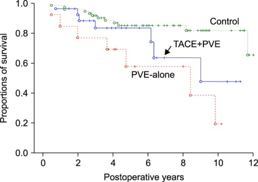 Comparison of the overall patient survival curves according to preoperative transcatheter arterial chemoembolization (TACE) and portal vein embolization (PVE).