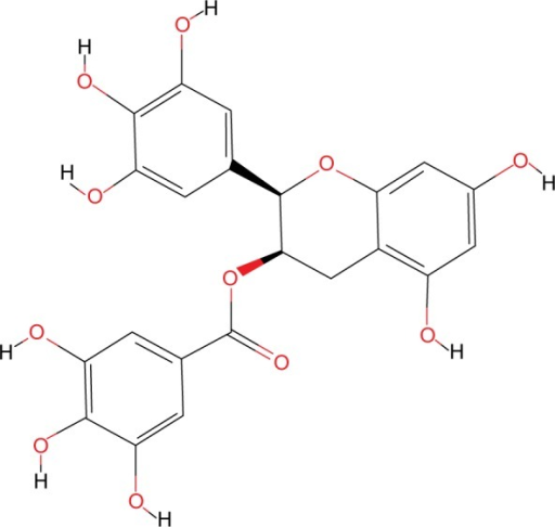 The chemical structure of EGCG.Abbreviation: EGCG, epigallocatechin gallate.