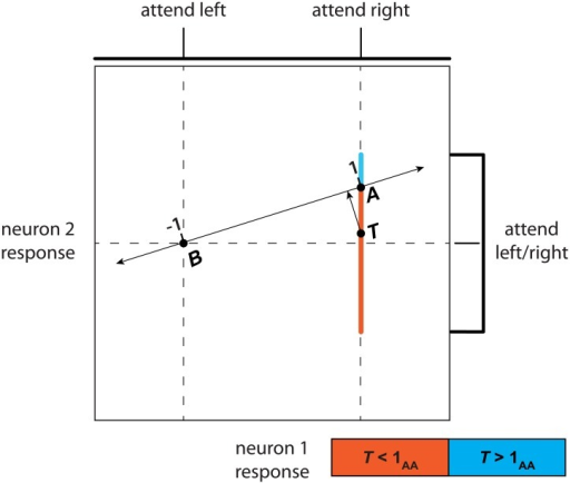 Multidimensional regression.The responses of two neurons in two conditions, attend-left and attend-right. Neuron 1's response to attend-right is greater than that to attend-left, and its responses in both conditions are noiseless, as illustrated by the impulse functions (top) and vertical dashed lines. The response of neuron 2 is noiseless in the attend-left condition, but drawn from a uniform distribution in the attend-right condition (impulse function and spanned range on right). The attention axis (double-sided arrow) connects samples A and B.