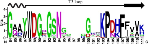 The consensus sequence logo of the loop T3 regions of 1,000 GH28 endo-PGs generated using the WEBLOGO.