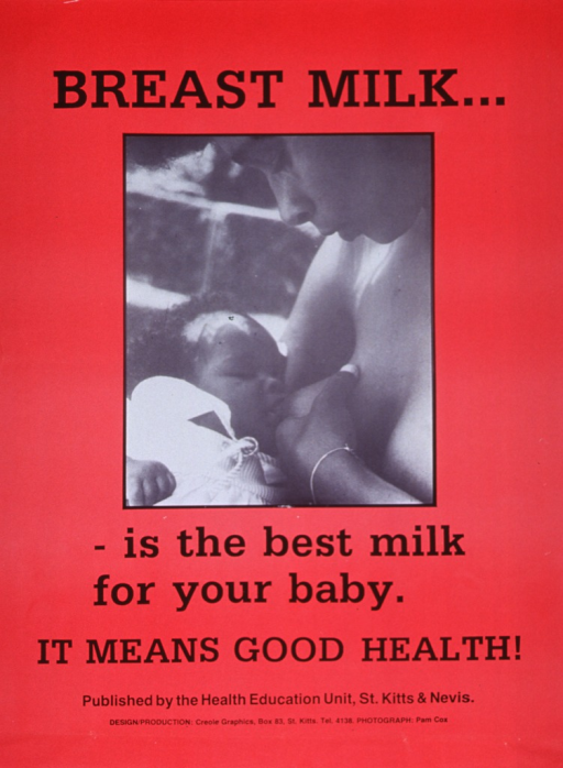 <p>Red poster with black lettering.  Initial title words at top of poster.  Visual image is a reproduction of a b&amp;w photo showing a mother breastfeeding her baby.  Remaining title words, caption, and publication information below photo.</p>