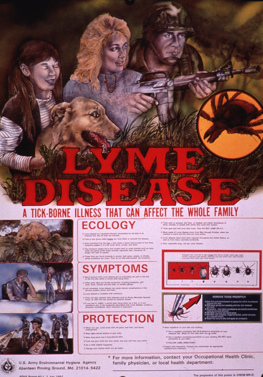 <p>Multicolor poster.  Dominant visual image is an illustration of a soldier with a gun, an adult woman, and a girl with her eyes closed (blind?) and her dog, all behind some dense grass.  A close-up of a tick and the title text are superimposed on the bottom of illustration.  Lower portion of poster features lengthy text explaining the ecology, symptoms, and prevention of Lyme disease.  Illustrations of a field mouse and a tick on the same twig, a man with a rash on his arm and a man walking with a cane, and soldiers spraying pesticides and applying DEET accompany the text.  Illustrations of ticks and how to remove them also appear.  Publisher and series information at bottom of poster.</p>