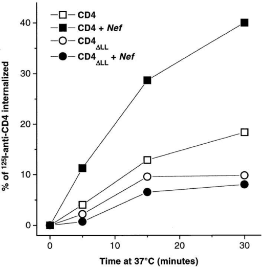 Kinetics of 125I–anti-CD4 antibody internalization in  Namalwa B lymphocytic cells transfected with CD4, CD4ΔLL,  CD4+Nef, or CD4ΔLL+Nef. Cells were incubated for 2 h at 4°C  with an 125I–anti-CD4 antibody and endocytosis of the radiolabeled antibody–CD4 complex was then allowed to occur by raising the temperature to 37°C for different periods of time as previously described (Pelchen Matthews et al., 1991; Aiken et al., 1994).