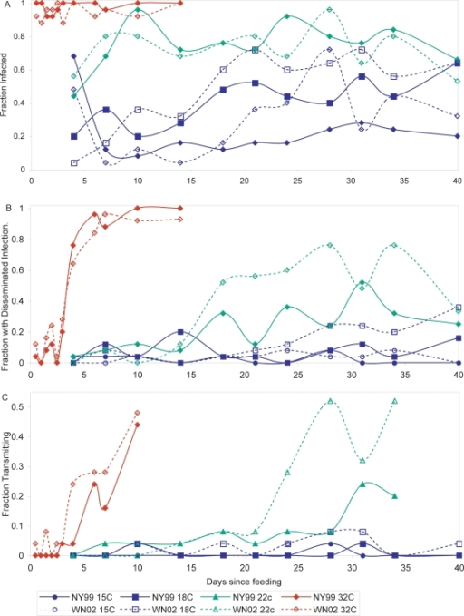 the relationship between the genotype and Tions appear to hold for some patient populations but not others investigators in south africa failed to find any signifi-cant relationship between mycobacterial genotype.