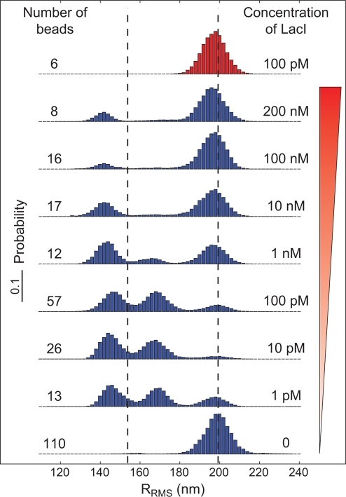 Concentration dependence of the distribution of bead excursions.The histograms show the distribution of RMS motions averaged over 4 seconds at different concentrations of Lac repressor. The blue histograms correspond to measurements for a length between operators of  (see fig. 15), whereas the red histogram is a control where  has been deleted. The two dashed lines represent the naively expected motion, based on our calibration measurements [91]. (See fig. 11 for a more precise prediction of the peak locations.)