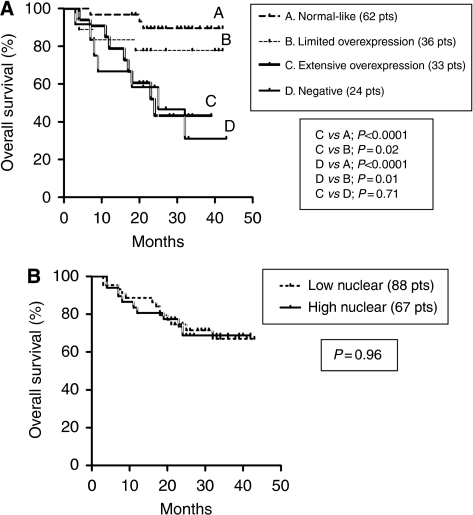 Kaplan–Meier overall survival curves according to the cytoplasmic patterns (A) and the nuclear expression (B). Pts, patients.