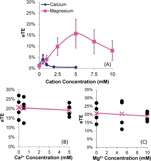 "Dependence of electrotransfection efficiency on cation concentrations.eTE is defined as the percent of live cells expressing GFP. B16-F10 cells were electrotransfected (400 V/cm, 5 msec, 8 pulses, 1 Hz) with unlabeled GFP-encoding pDNA in a transfection buffer. GFP expression was measured using flow cytometry after 24 hr incubation. (A) The low ionic strength medium supplemented with Ca2+ or Mg2+ at varying concentrations was used as the electrotransfection buffer. n = 7–8. The symbols and error bars denote means and standard deviations, respectively. The peak eTE value in each curve was significantly higher than those at both ends of the same curve (P<0.05). In Panels (B) and (C), OptiMEM was used as the electrotransfection buffer. After 20 min incubation post electrotransfection, the cells were re-suspended in the low ionic strength medium supplemented with either Ca2+ or Mg2+ at varying concentrations and treated again with the same electric field. The GFP expression was quantified at 24 hr. n = 4. The filled circles denote data from individual samples, the ""x"" symbol represents the mean of the samples at a given cation concentration, and the line represents the linear regression of the mean data. The mean value was statistically independent of the variation in Ca2+ and Mg2+ concentrations (P>0.05, Mann Whitney U test)."