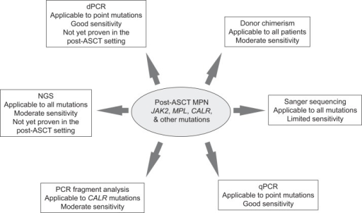 Summary of methodologies for monitoring MPN-specific mutations post-allogeneic stem cell transplantation. ASCT, allogeneic stem cell transplantation; MPN, myeloproliferative neoplasm; qPCR, quantitative polymerase chain reaction; NGS, next generation sequencing; and dPCR, digital polymerase chain reaction.