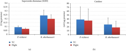 Superoxide dismutase (a) and catalase (b) activities in flight and ground temperature control (TC) samples in the tardigrades Paramacrobiotus richtersi and Ramazzottius oberhaeuseri. The bars show the mean with SD.