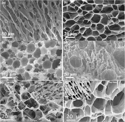 (a) Side (parallel to freezing direction) and (b) top view (perpendicular to freezing direction) of a GO-PN fabricated by freeze casting of GO-sus. The material exhibits a lamellar structure with a honeycomb-like cross sectional morphology. (c) Foam-like porous networks fabricated by using high concentrated oil-in-water emulsions (75 vol. %) and (d) hybrid foam-lamellar structure fabricated through the freeze casting of oil in water emulsions with low oil content (25 vol. %). (e) A lamellar GO-PN produced from GO-sus of same density (5 mg/ml) as those used for samples shown in (a,b), but using smaller GO flakes (<2 μm) than (a,b) (20–60 μm). (f) A rGO-PN network after the heat treatment at 1223K.