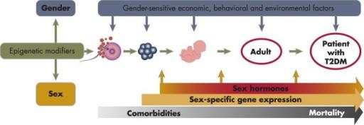 biological factors that influence development