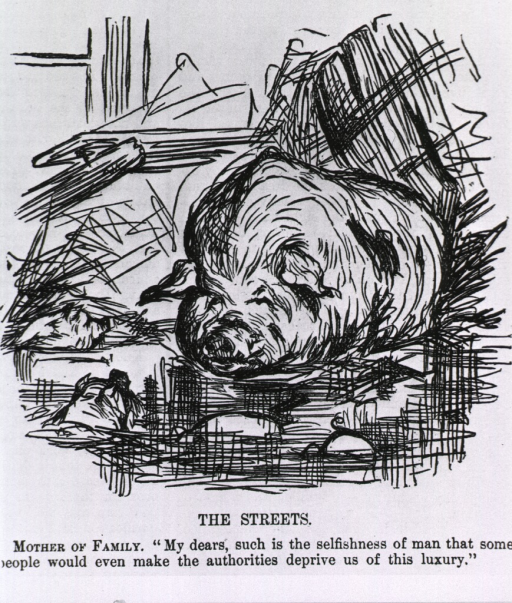 <p>The streets.  Cartoon on pigs wallowing in the streets.</p>