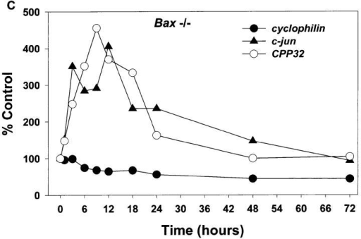 mRNA levels of  c-jun and CPP32 increase in  both Bax +/+ and Bax −/−  granule cells after K+ deprivation. Cultures were  switched to K5+S and  cDNA was prepared from  granule cells after 1, 3, 6, 9,  12, 18, 24, 48, or 72 h. Control cultures were maintained  in K25+S medium. cDNA  from ∼4,000 cells was used in  a 50-μl PCR reaction as described in Materials and  Methods. Identical results  were obtained in an independent neuronal preparation.  (A) PCR products. (B) PhosphorImager quantitation of  Bax +/+ PCR products. (C)  PhosphorImager quantitation of Bax −/− PCR products. Time 0 was used as control level for B and C.
