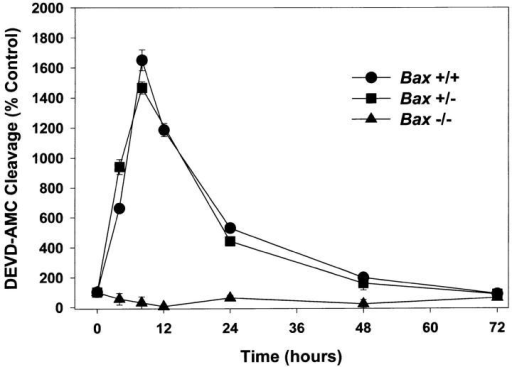 BAX is required for increases in caspase activity. Cultures were switched to K5+S medium, lysed after 4, 8, 12, 24, 48,  or 72 h, and cleavage of DEVD-AMC was determined. Control  cultures were switched to K25+S medium and treated identically.  Data represent mean ± SD for triplicate measurements from one  experiment and are representative of two additional independent  experiments.