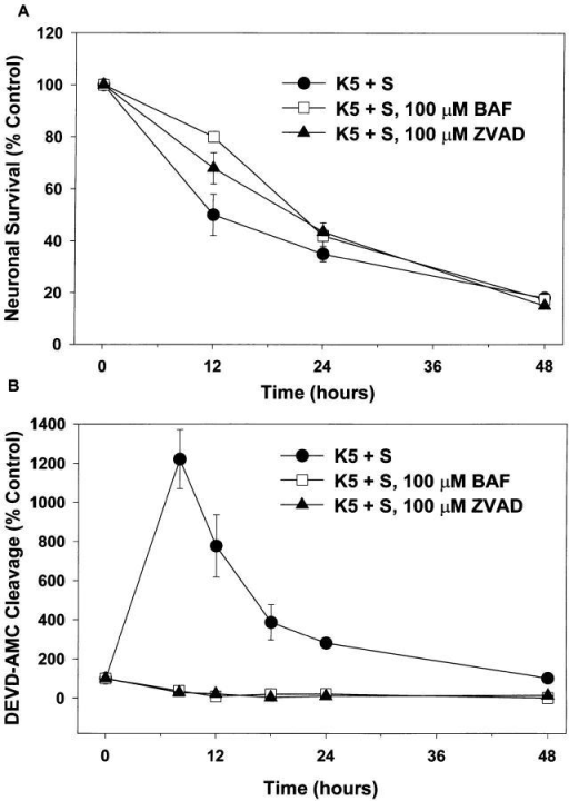 Inhibitors of caspases do not block death, but do block  DEVD-AMC cleavage. Cultures were switched to K5+S, K5+S  plus 100 μM BAF, or K5+S plus 100 μM ZVAD-FMK. Control  cultures were switched to K25+S medium. (A) After 12, 24, or 48 h  neuronal survival was determined by calcein AM staining. (mean ±  SD, N = 3 experiments) (B) After 8, 12, 18, 24, or 48 h cultures  were lysed and assayed for DEVD-AMC cleavage. Fluorescence  was measured after 20 min at room temperature (mean ± range,  N = 2 experiments).