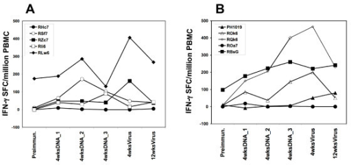 Magnitude of PfCSP-specific IFN-γ responses from PfCSP/PBS and CSLAM/PBS immunized animals. PBMC were collected at time points as defined in the legend to Figure 2 and assayed against recombinant PfCSP protein by IFN-γ ELIspot. Results show the magnitude of SFC from individual monkeys immunized with either (A) PfCSP/PBS or (B) CSLAM/PBS.