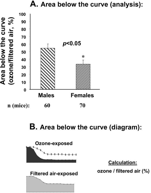 "Comparison of ""cumulative"" survival rates of males and females after ozone-exposure followed by K. pneumoniae infection. Experimental design was described in the legend for Figure 1, and in the Methods section. Panel A: Data (in percent of control – FA) for differences in survival between males and females. Panel B: Graphic representation of area below the curve (O3 and FA depicted by black and grey filled areas, respectively) of data shown in Panel A. The experiments from which these data are derived are in Panel B of Figure 1. The area below the curve was calculated with Sigma Plot 10.0 Software. O3 (top) and FA (bottom) curves. The resulting ratios (O3/FA times 100%) for males vs. females were compared with a t-test. Results were considered significant when p < 0.05, and are indicated with an asterisk, *."