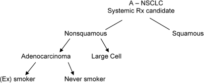 A suggested approach to the subgrouping of advanced non-small-cell lung cancer (a-nsclc) in the absence of biomarkers. Rx = prescription.