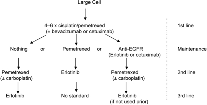 Suggested management of large-cell carcinoma of the lung. egfr = epidermal growth factor receptor.