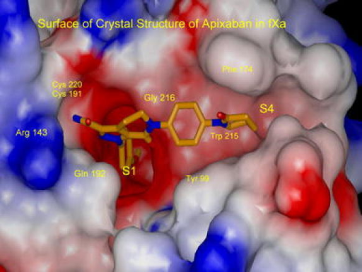 X-ray structure of apixaban bound to factor Xa