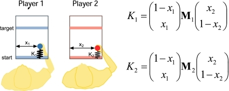 Experimental setup. Player 1 and Player 2 each control a cursor from a start bar to a target bar. The movement can be chosen anywhere along the x-axes. However, the forces that resist the players' forward movement are given by spring constants whose stiffness depend both on the x-position of Player 1 and on the x-position of Player 2
