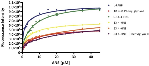 The binding profile of apo rL-FABP is adversely affected following 4-HNE adduction.Utilizing the fluorescent probe, ANS, equilibrium binding studies of native and 4-HNE modified r-LFABP revealed alterations in both affinity for ANS and maximal binding capacity for ligands when the protein is modified. PG, an arginine blocker, is used as a control for 50% of maximal binding. Blue - 0X 4-HNE; green-0.1X 4-HNE (5.93 µM); yellow-1X 4-HNE (53.95 µM); orange-5X 4-HNE (245.09 µM); red-PG (10 mM); purple-5X 4-HNE + PG.
