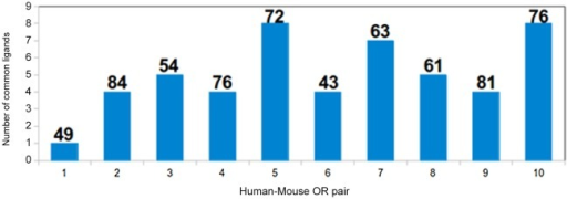 The number of common odorants among the best ten high scoring odorants for 10 human-mouse OR pairs.The figure shows the number of common ligands picked by ten OR pairs. The OR pair with highest sequence identity (Pair 2) has 4 common ligands while OR pair 5 and 10 have eight common ligands. The sequence identity of each pair is marked on top of the bar in the graph.