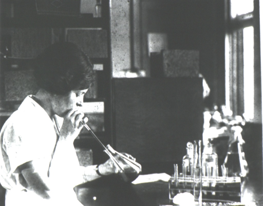 <p>Laboratory scene: a woman is using a pipette to select and mount specimens of ectoparasites.</p>