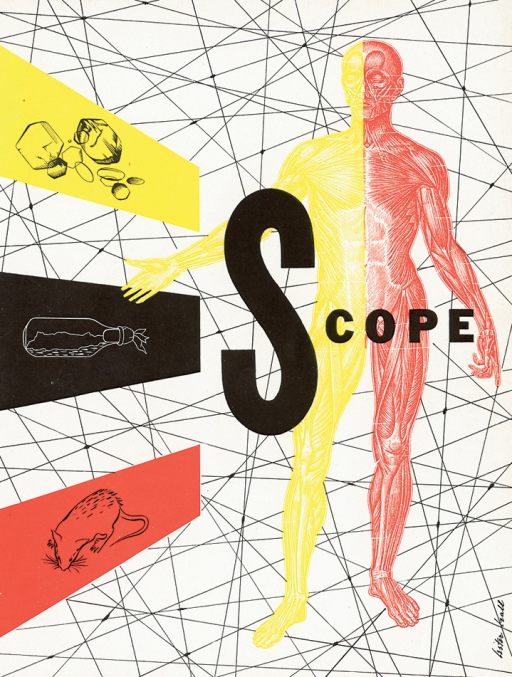 <p>Magazine cover of Scope designed by graphic designer Lester Beall.  The background of the magazine cover is white with thin black lines intersecting each other. On the right side of the page is a man's body depicting tendons, the left half is in yellow, the right half is in red. On the left side of the page are three rectangular shapes jutting out, the top one is yellow, with several unidentified shapes outlined in black outline; the middle one is black, with a bottle-shaped image outlined in white, inside the bottle are unidentified images; the bottom is red with a rat image outlined in black. Lester Beall's signature appears on the bottom right of the page vertically.</p>