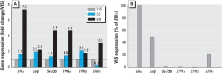 Depot-specific differences in the expression of putative receptors that may mediate the action of BPA or E2, as determined by real-time reverse transcriptase PCR. (A) Differences in expression of ERα, ERβ, GPR30, ERRα, ERRβ, and ERRγ in SC and breast (BR) adipose tissue calculated as fold change (shown above bars) relative to VIS adipose tissue. (B) Relative abundance of the above receptors in VIS adipose tissue compared with ERαexpression.