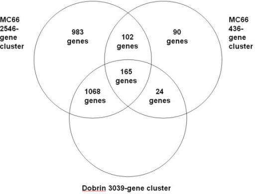 Overlap between putative schizophrenia-related clusters produced from Dobrin and MC66 datasets. Venn diagram showing the amount of overlap between the clusters enriched for schizophrenia-related genes, in order to construct randomised clusters for permutation.